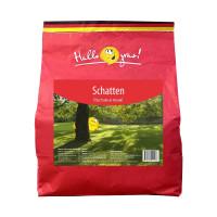 Семена газонной травы SCHATTEN GRAS ( 1 кг)